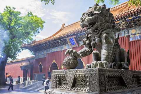 Lama Temple, Olympic Area, Beijing Zoo & Hutongs Tour