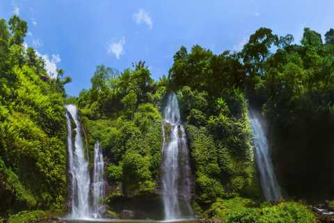 Private Sekumpul Waterfall Hiking Tour