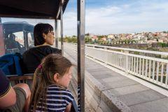 Porto: Trem Mágico e Degustação de Vinho do Porto