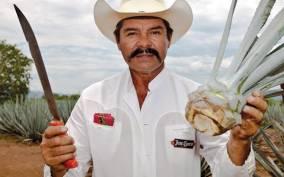 From Guadalajara: Jose Cuervo Distillery & Tequila Town Tour