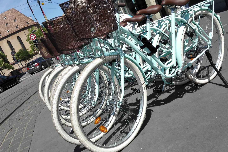 Straßburg: Fahrradverleih für 1 Tag