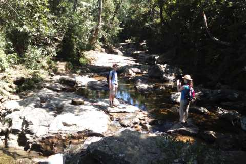 Bach Ma National Park: Private Jeep Tour with 3-Hour Hike