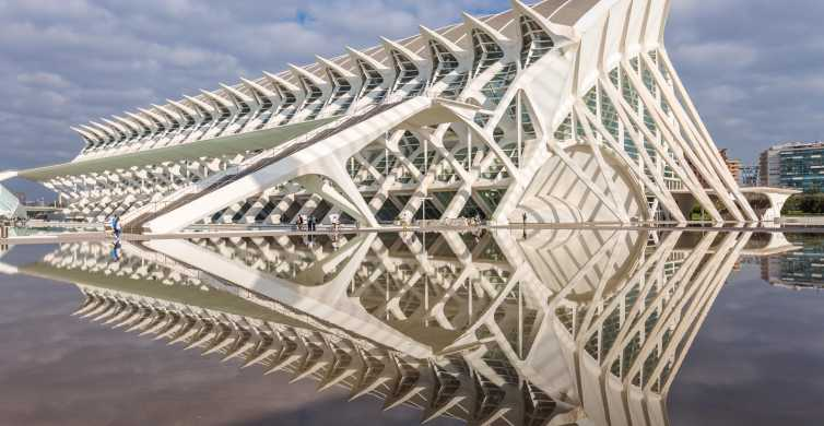 Valencia: ticket voor Principe Felipe Wetenschapsmuseum