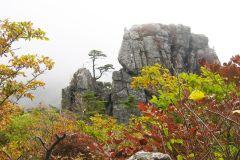 Parque Nacional de Seoraksan e Naksansa Temple Group Tour