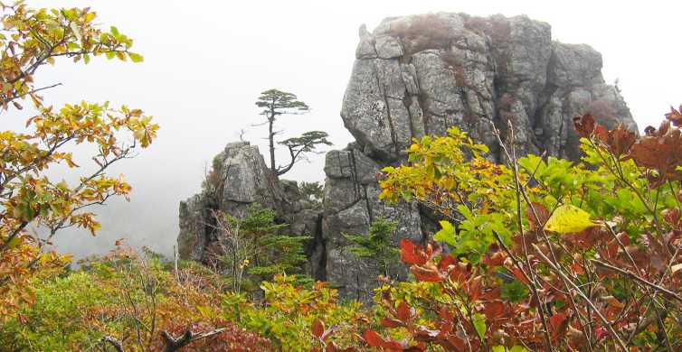 Seoraksan National Park and Naksansa Temple Group Tour