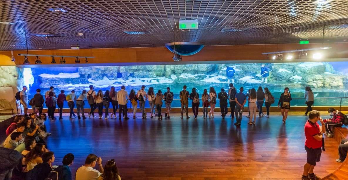 Walencja: bilet wstępu do oceanarium L'Oceanogràfic