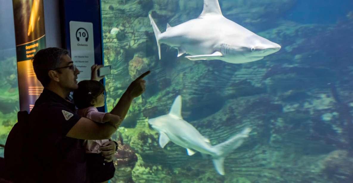 Valencia: Oceanogràfic Entrance Ticket