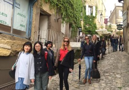 What to do in Bordeaux - Saint-Emilion Small Group Wine Tour