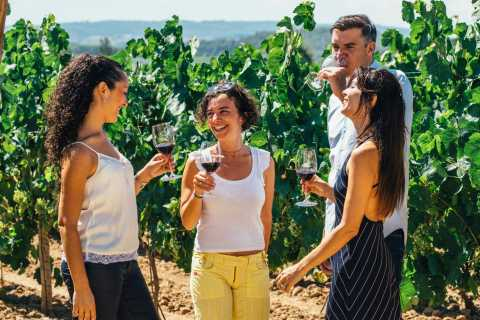 Barcelona: vino, cava, tapas y viñedos en 4x4