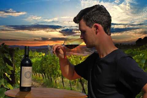 Siena: Educational Wine Tour & Tasting