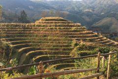 Guilin: Terraços de arroz de 2 dias Longsheng com transferência e hotel