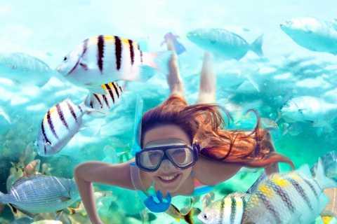 Cancun & Riviera Maya: Xel-Há All-Inclusive & Transportation