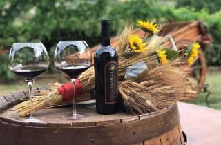 San Gimignano: Private Weingut-Tour mit Wein- & Ölverkostung