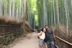 Kyoto: Excursão gastronômica a pé pela floresta de bambu de Arashiyama