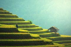 De Guilin: Excursão fotográfica e dia do nascer do sol de 3 noites em Yangshuo