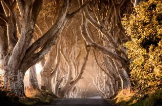Belfast: Game of Thrones Tour mit einem 2-tägigen City Tour Pass