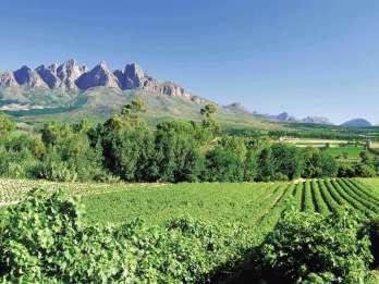 Ab Kapstadt: Tagestour durch die Winelands mit Weinprobe