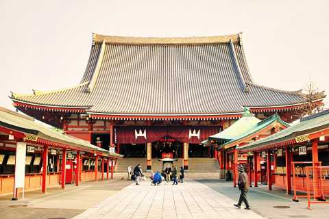 Tokyo: 1-Day Private Customizable Tour by Car