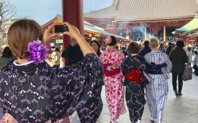 Tokyo: Personalized Private 6-Hour Tour