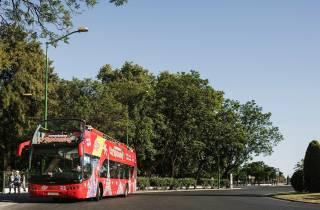Potsdam: 1-Tagesticket für die Hop-On/Hop-Off-Bustour