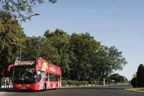 Potsdam: 1-Day Hop-on Hop-off Bus Ticket