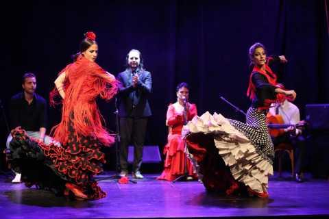 Barcelona: Theater Flamenco Zone C Tickets