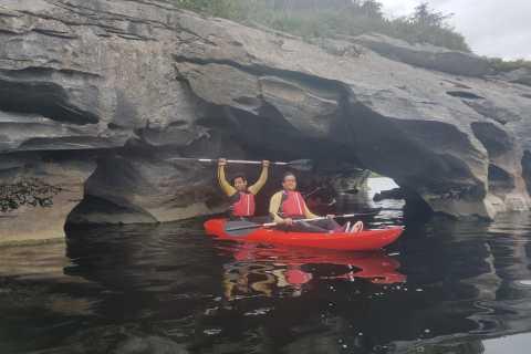 Killarney Kayaking Tour and Innisfallen Island