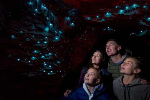 Te Anau: Glowworm Caves Guided Tour