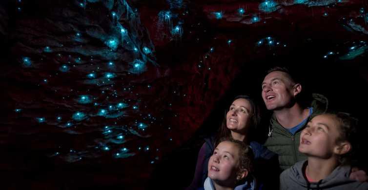 Te Anau: Glowworm Caves Guided Tour