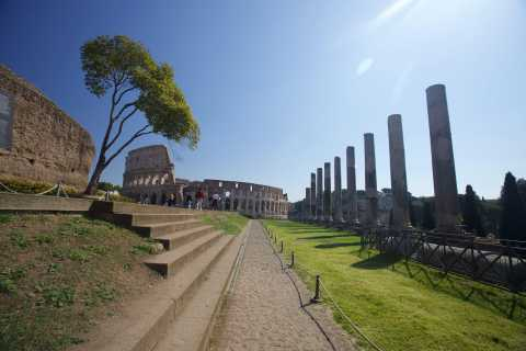 Rome: 1-Hour Ultimate Colosseum Tour