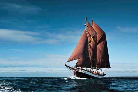 Húsavík: Whale Watching by Traditional Wooden Sailing Ship