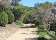 Ab Chia: Wanderung über die Antike Römerstraße nach Cagliari