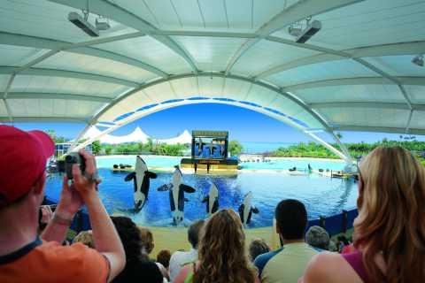 Fra Maspalomas: Heldagstur til Tenerife og Loro Parque Zoo