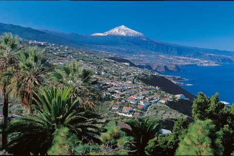 Fra Gran Canaria: Dagstur til Tenerife