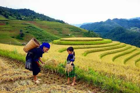 From Sa Pa: 5-Hour Muong Hoa Valley Trek and Ethnic Tribes
