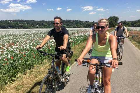 Prag till Karlstejn Castle E-Bike Tour