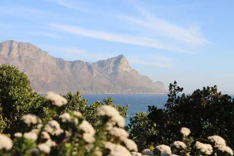 Van Kaapstad: Winelands en Whale Coast 2-daagse tour