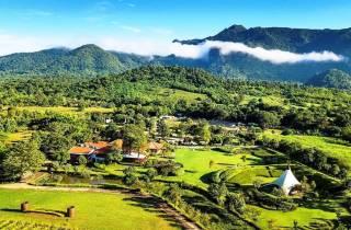 Khao Yai Weingut Verkostungs-Tour & Perdefarm-Besuch