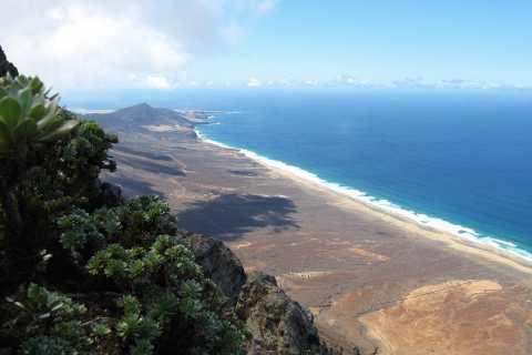 Fuerteventura: Pico de la Zarza Tour