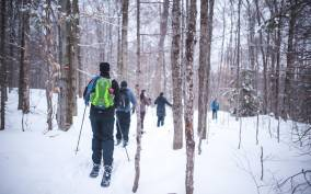 Jacques-Cartier National Park: Ski-Shoeing Excursion