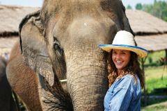 Chiang Mai: Tour Santuário de Elefantes em Grupos Pequenos