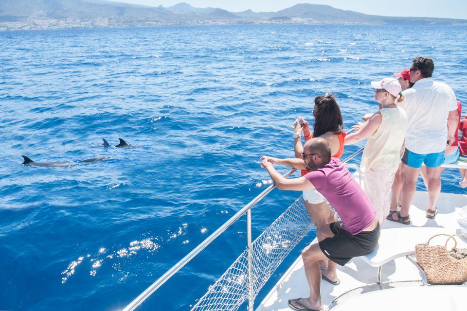 Obserwacja wielorybów z łodzi