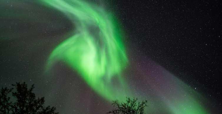 Ab Tromsø: 7-stündige Tour zu den Nordlichtern