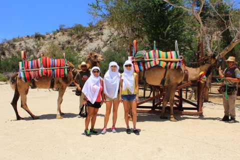 El Tule Canyon Camel Adventure from Cabo