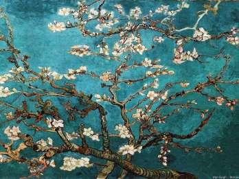 Amsterdam: Führung durchs Van Gogh Museum inklusive Ticket