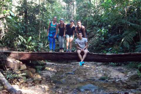 Rio: Tijuca Forest Historical Hike & Cachoeira das Almas