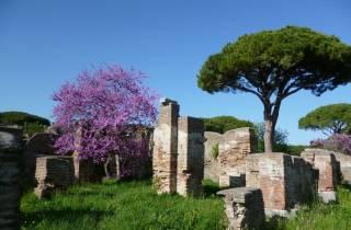Rom: Ohne Anstehen geführte Tour durch Ostia Antica
