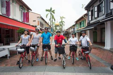 Singapore Small Group Bike Tour with a Local Guide