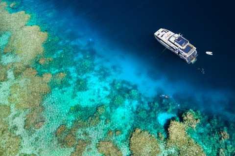 Ab Cairns: Great Barrier Reef - Luxusschnorcheln & Tauchen