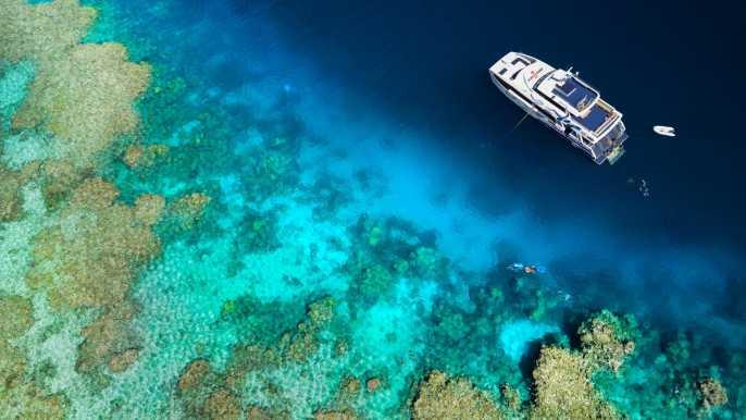 Desde Port Douglas: esnórquel en la Gran Barrera de Coral